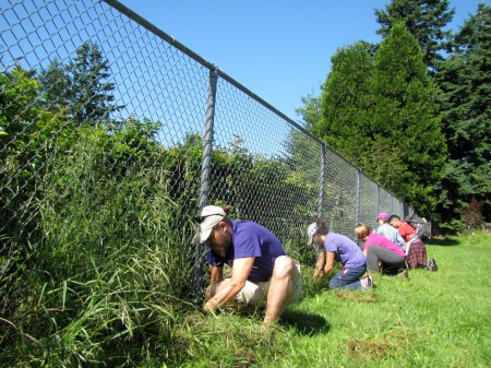 Weeding in preparation for a community garden outside a homeless day shelter.