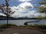 seatle cityscape.2013.IMG_0113