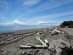 A view of the Salish Sea during a visit to the Lummi Nation in Washington.